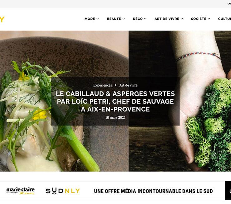 webdesign-sudnly